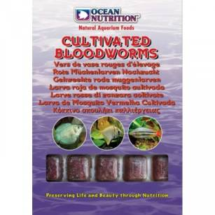 ON Frozen Cultivated Bloodworms 100g