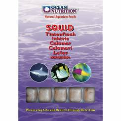 Ocean Nutrition Squid 100g