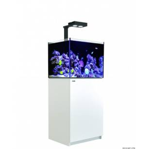 Red Sea Reefer 170 Deluxe Biały